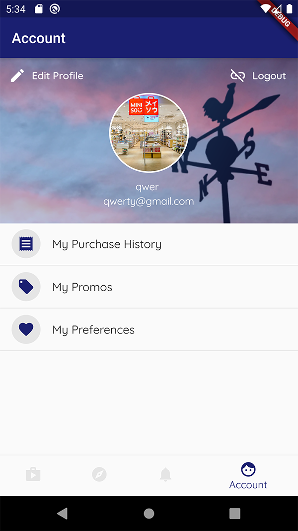 The account screen of PromoGo