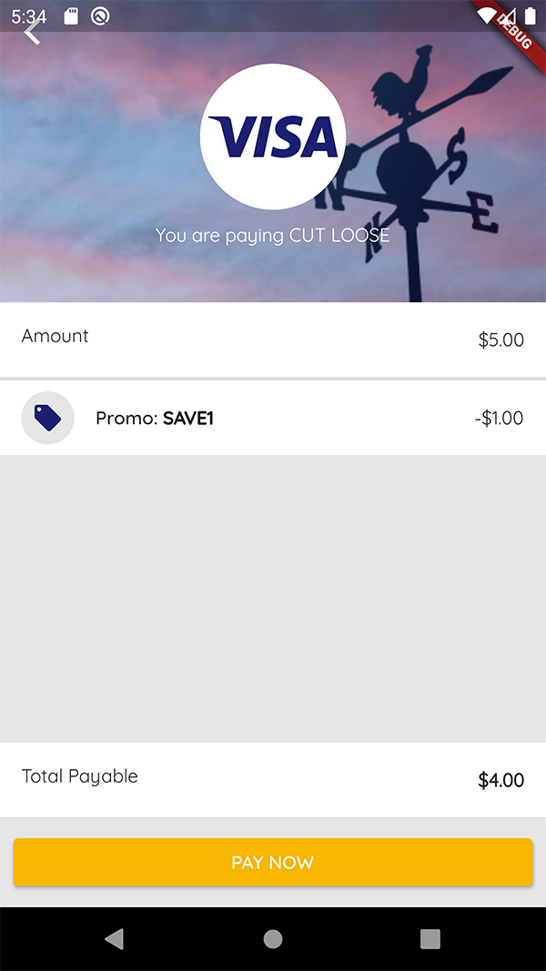 The payment screen of PromoGo, utilizing the Visa Direct API